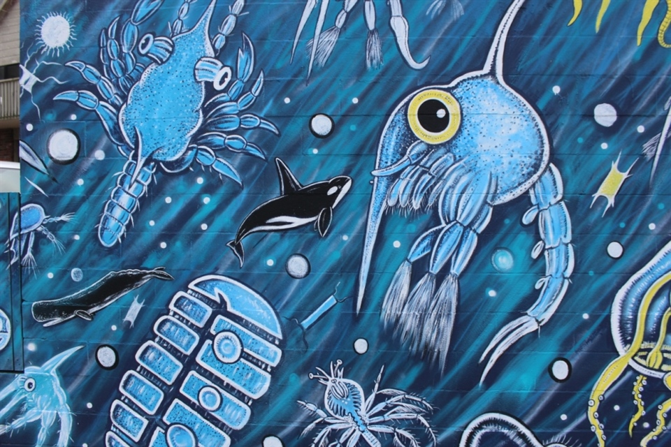 Plankton Wall(Detail)