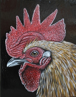 Suffolk Rooster #2(2017)